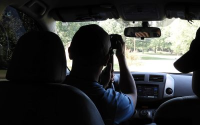 How Can A Private Investigator Help Me?